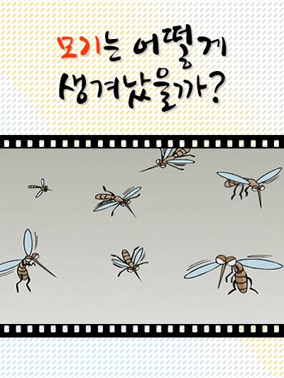 모기는 어떻게 생겨났을까?의 책표지