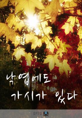 낙엽에도 가시가 있다의 책표지