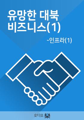 유망한 대북 비즈니스(1) - 인프라(1)의 책표지
