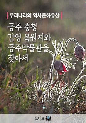 <a href='contents.php?cs_code=CS201705220019'>우리나라의 역사문화..</a> 책표지