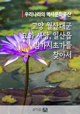 <a href='contents.php?cs_code=CS201705220024'>우리나라의 역사문화..</a> 책표지